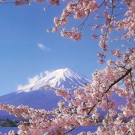 Виды достопримечательностей японии